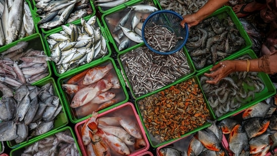 Imports from Dalian, which primarily fishes for tuna, have exceeded USD 20 million as recently as 2018.(Reuters file photo)