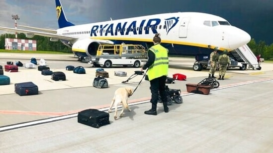 Security use a dog to check the luggage of passengers on the Ryanair jet that carried opposition figure Raman Pratasevich, traveling from Athens to Vilnius, Lithuania. The plane was diverted to Minsk, Belarus, after Belarusian flight controllers told the crew that there was a bomb threat against the plane. (AP)