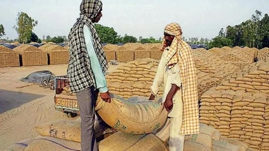 At least 110 lakh tonnes wheat procured in the recent rabi season is stored in open plinths, vulnerable to the vagaries of weather. (HT File)