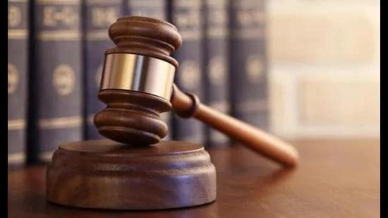 In patriarchal society, it's common to cast aspersions on woman's character, says HC