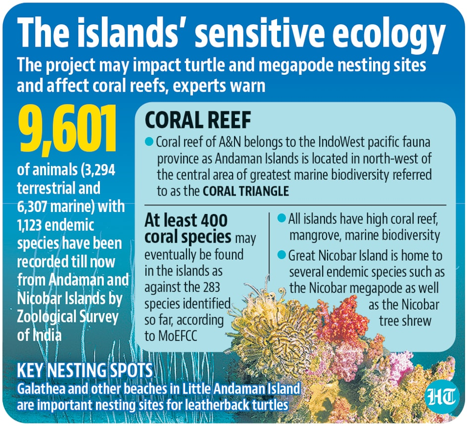 Two township projects on the Little Andaman Island and the Great Nicobar region conceptualised by Niti Aayog will also be constructed by ANIIDCO.(Hindustan Times)