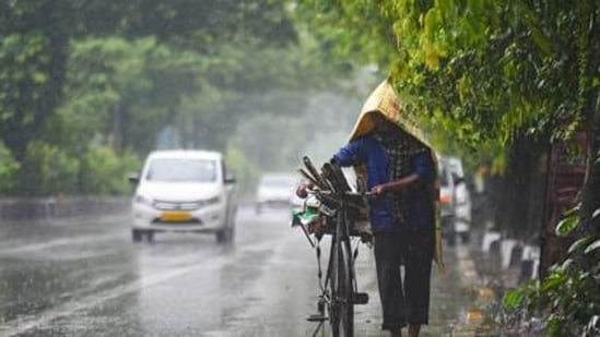 In the last 24 hours, parts of Madhya Pradesh, including Bhopal, Indore, Gwalior and Hoshangabad divisions witnessed showers.(Amal KS/HT file photo)
