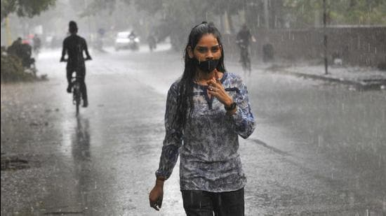 A deficit of about 10% can be expected due to the 'below normal' monsoon. (HT File photo)