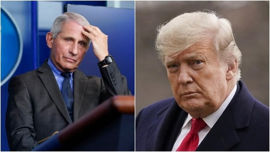 At one point, Dr Anthony Fauci even acknowledged that he was no longer in frequent contact with President Donald Trump.(AP)