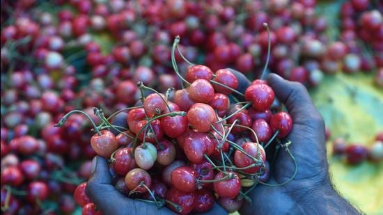 Officials in the horticulture department said the production had reached around 11,289 and 11,789 metric tons in 2017 and 2018, respectively. (HT File)