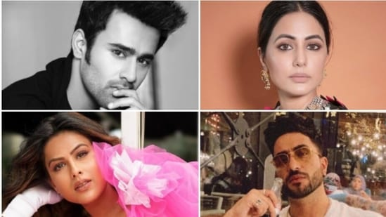 Many celebs including Hina Khan, Nia Sharma, and Aly Goni have supported Pearl V Puri.