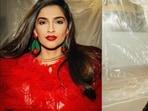 Sonam Kapoor aces 'Devil Wears Prada' vibes in sultry tulle dress, rosebud lips(Instagram/sonamkapoor)