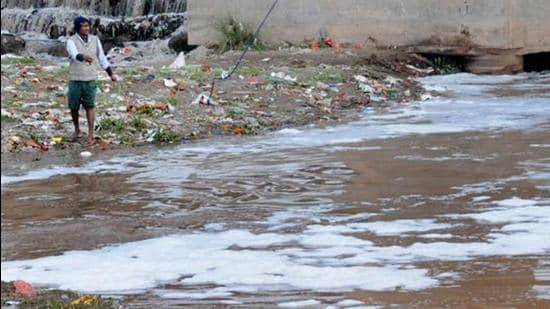The green tribunal directs central and state pollution boards to inspect the river and furnish status report within two months. (HT File Photo)