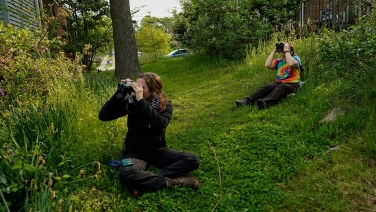 Avian ecologist and Georgetown University Ph.D. student Emily Williams, right, and a volunteer watch bird netting with binoculars from distance for American robins.(AP)