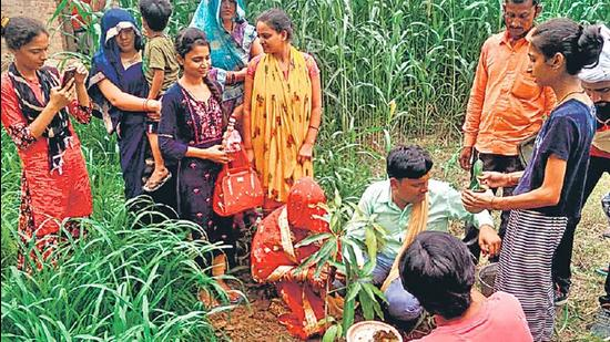 Newly married couple Atul and Sandhya planting a sapling in Amni Lokipur village in Kaushambi district. Sourced Photo