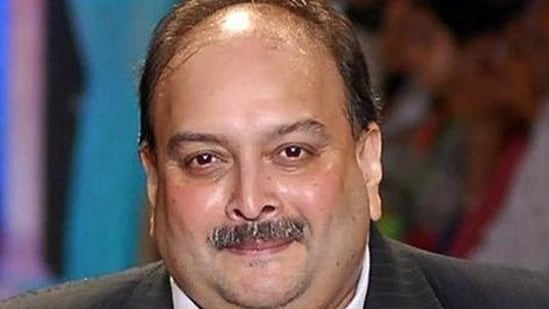 Had Mehul Choksi been going to Dominica, why would he leave his passport, car keys behind, Priti Choksi asked.