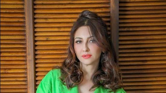 Actor Saumya Tandon shot for advertisements and hosted shows from her home in this pandemic.