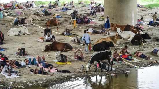 People rest under a bridge for respite from scorching heat, in New Delhi on Wednesday, June 9. (PTI)