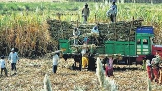 A subsidy of <span class='webrupee'>₹</span>20 crore will be provided in the Cyclone affected districts for procurement of technical agriculture equipment along with the rebates, said the statement.(HT file photo)