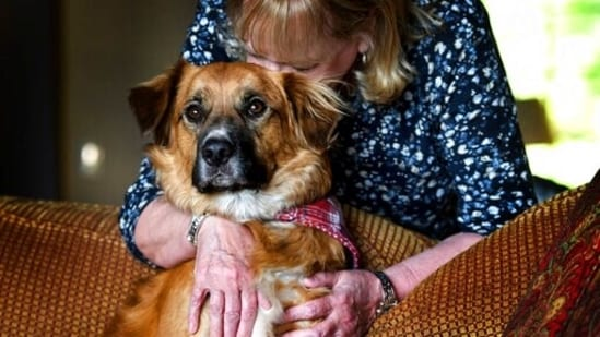Linda Oswald hugs 2-year-old dog Tilly at their home in Hayden, Idaho.(AP)