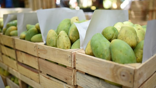 """Pakistan's Foreign Office (FO) sent boxes of the fruit to heads of more than 32 countries under its """"mango diplomacy"""". (Bloomberg Photo)"""