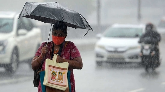 Punjab, Haryana rainfall prediction: Isolated thunderstorms with heavy rainfall and gusty winds have been predicted from tomorrow. (File Photo / AFP)