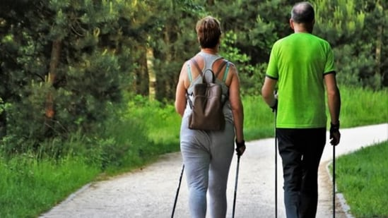 In ageing humans, aerobic exercise training increases grey and white matter volume enhances blood flow and improves memory function.(File image)