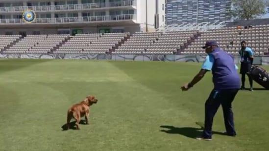 Ravi Shastri playing with a dog named Winston.(Twitter/@RaviShastriOfc)