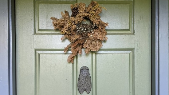 The image shows bird babies inside a wreath hanged on a door.(Twitter/@wigu)