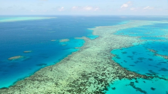 Australia said it will fight Unesco recommendation for the Great Barrier Reef to be listed as in danger of losing its World Heritage Site status.(AP)