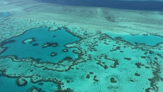 An aerial view of the Great Barrier Reef off the coast of the Whitsunday Islands, along the central coast of Queensland.(AFP File Photo)