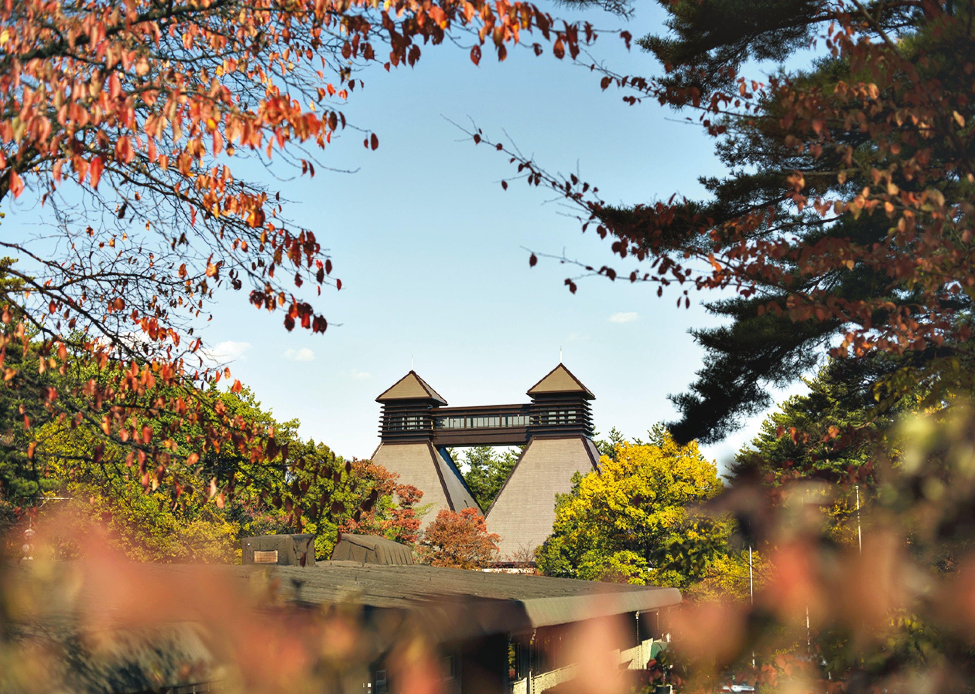 富士山の最も深い森の中に建てられた。 Kaikomagatake