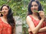 Bhagyashree reveals lesser known health benefits of eating 'ghar ki kurkuri, taazi bhindi' in raw form(Instagram/bhagyashree.online)