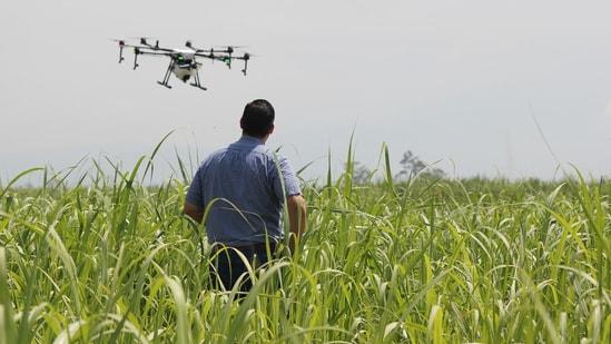Drones are the backbone of precision farming.