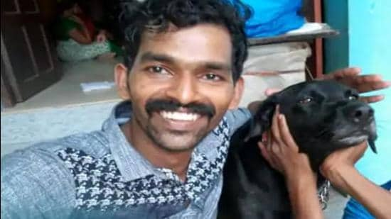 """The Kerala high court's division bench said instances of cruelty to animals reported in the media had become """"frighteningly frequent"""" in the last couple of years"""