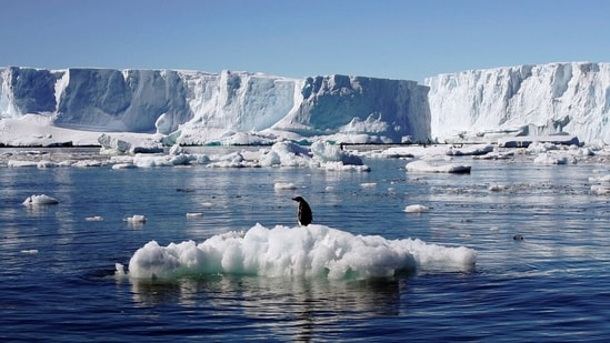 The Antarctic Peninsula is among the fastest-warming regions of the planet, almost 3°C over the last 50 years, the UN agency said. (Pauline Askin / REUTERS)