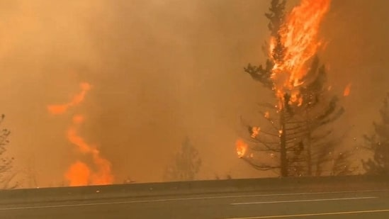Trees burn along a street during a wildfire in Lytton, British Columbia, Canada.(Reuters)