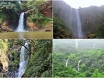 Goa is blessed with not just beautiful beaches but also breathtaking waterfalls that will leave you awestruck. Here are a few must-visit falls in Goa that cannot go missed.(Instagram)