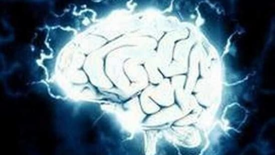 The researchers found that brain lesions associated with self-reported spirituality map to a brain circuit centred on the periaqueductal grey.(ANI)