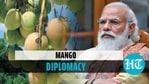 2,600 kg mangoes for PM Modi, Mamata sent by Bangladesh PM Hasina