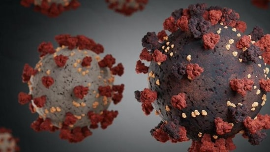 The Union health ministry said earlier this week on Wednesday that 'variants of concern' of the SARS-CoV-2 coronavirus were detected in as many as 174 districts across 35 states and Union territories. (Representational Image)