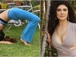 Pooja Batra nails Forearm Wheel Pose, says yoga can slow the thinning of bones(Instagram/@poojabatra)
