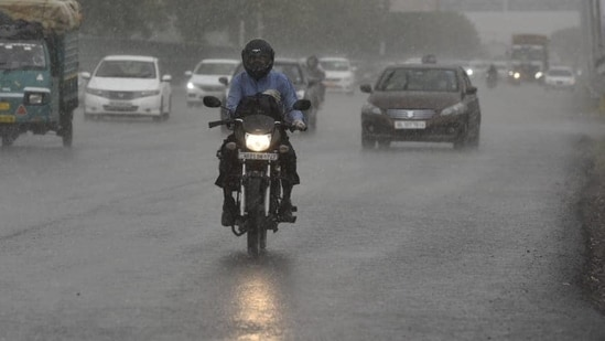 The rainfall activity in Madhya Pradesh is expected to go up due to a trough that runs from the central part of the state to south Tamil Nadu, the IMD said.(File photo. Representative image)