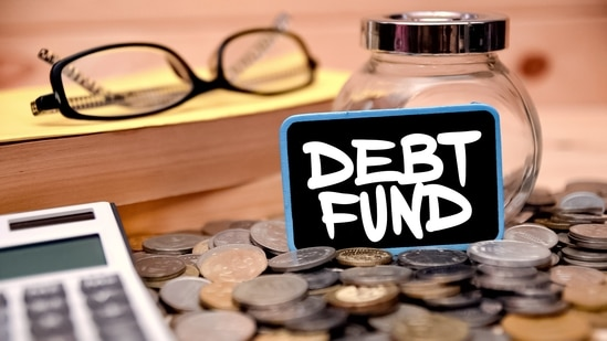 Debt funds can cushion the impact on your investments when volatility is high and thus bring about predictability and safety in your portfolio.