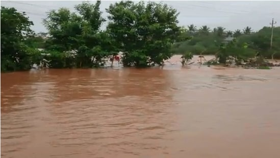 Rivers in northern Karnataka have experienced heavy flooding. (File Photo)
