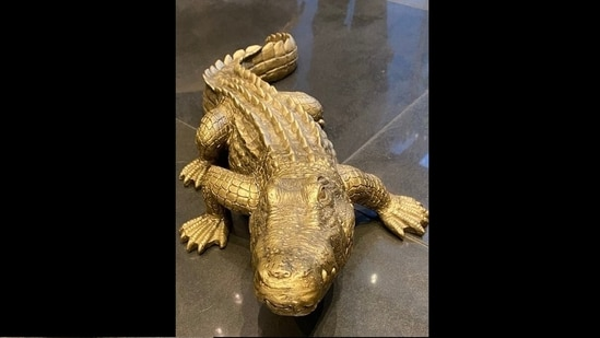 The 'realistic fake' alligator. (Twitter/@JDoucette2050)