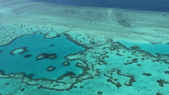 An aerial view of the Great Barrier Reef off the coast of the Whitsunday Islands, along the central coast of Queensland (AFP File Photo).