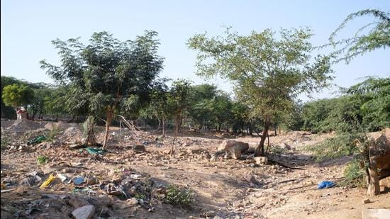 The site chosen for the city forest is a watershed of a disappeared seasonal stream that flowed into the Sahibi river, a tributary of the Yamuna, where widespread mining took place in the 1990s. The area was later encroached upon by locals, with shanties and a marble market dotting the landscape. (Vijay Dhasmana)