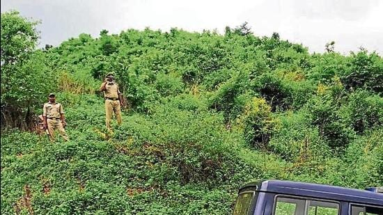 Station officer (Jugail police station) Arvind Mishra on a road in Chaura area of Sonbhadra district, trying to catch the cell phone network to speak to his seniors. The Chaura area is about 12 km from Jugail police station, which lacks cell phone towers in the vicinity. (HT Photo)