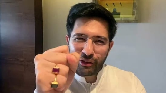 Replying to a tweet, Raghav Chadha said he can commit about free electricity, not about himself.(ANI)