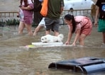 A girl helps her pet dog through flood waters after record downpours receded in Zhengzhou city in central China's Henan province. (PTI)