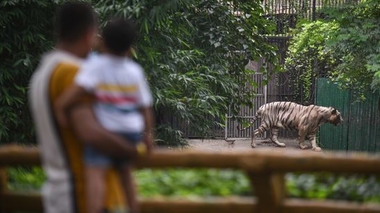 The Delhi zoo reopened on April 1 this year, after being shut for nearly a year since the pandemic broke out in the national capital in March last year, but was closed two weeks later. (Photo by Sanchit Khanna/ Hindustan Times)(Sanchit Khanna/HT PHOTO)