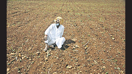 A farmer at his field after sowing seeds, on a hot summer day in Chikmagalur on July 2. (PTI)