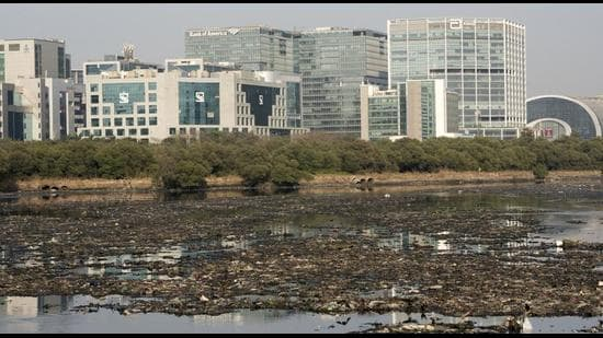View of polluted Mithi river. (FILE)