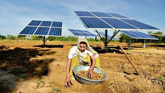 A farmer works near solar panels installed in the field to help pump water for irrigation purposes, in Gujarat's Dhundi.(AFP)